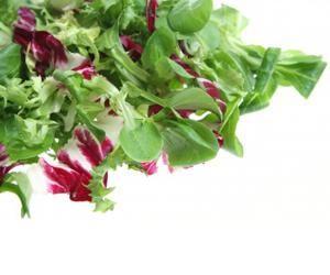 Nonfreeze – Vegetables